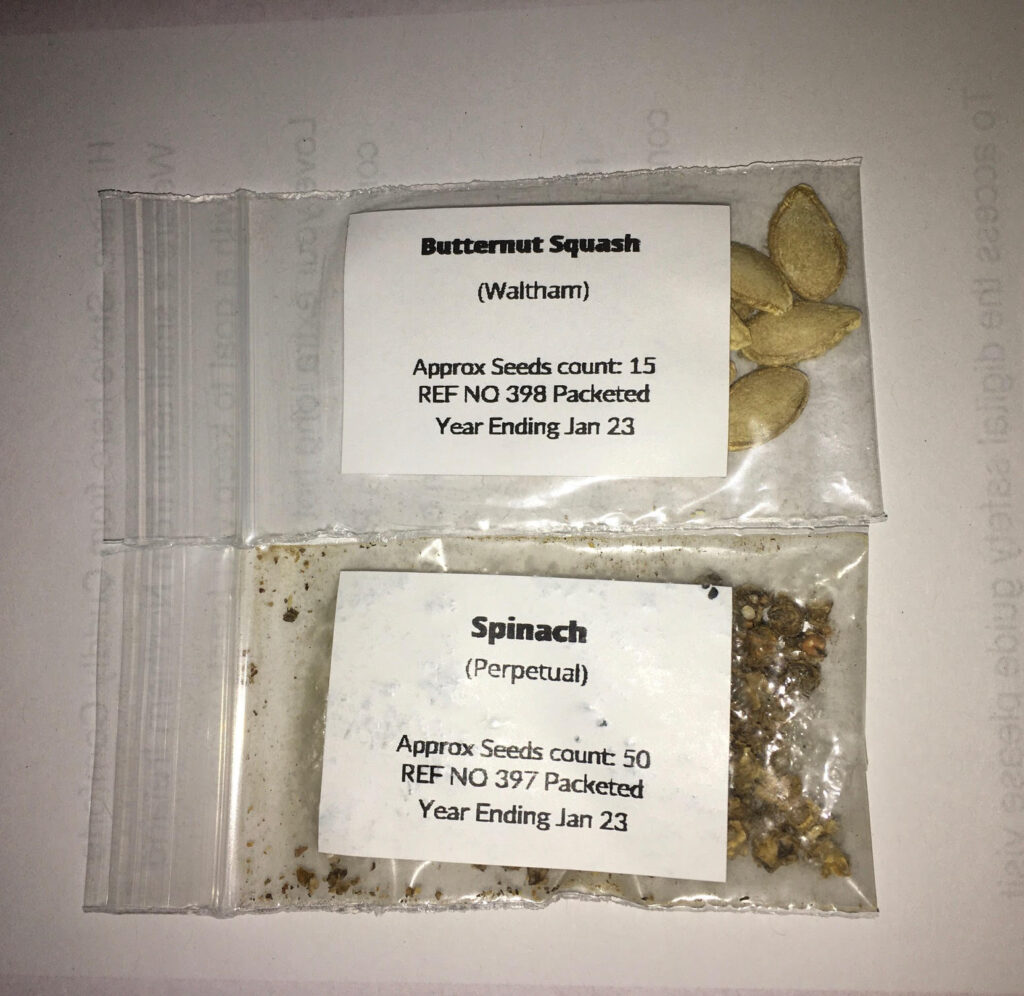 Squash and spinach seeds